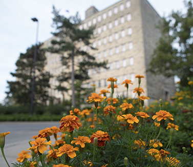 Marigolds in front of Fraser Hall